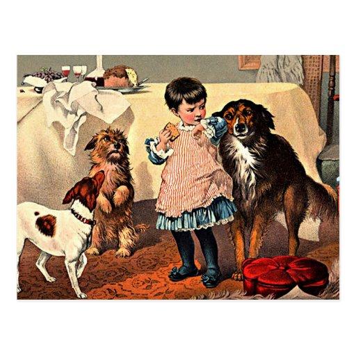 Postal: Chica y perros Tarjeta Postal
