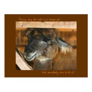 Postal chistosa linda del animal del campo de la l