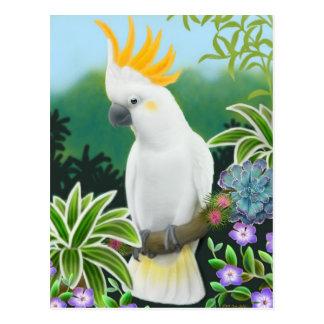 Postal cítrica del Cockatoo