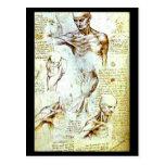Postal-Clásico/Vintage-Leonardo da Vinci 13