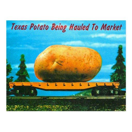 Postal clasificada Tejas retra de la patata del ki