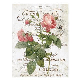 Postal color de rosa botánica francesa del vintage