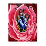 postal color de rosa de la mano