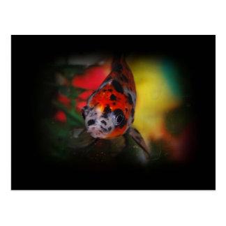 Postal coloreada del Goldfish