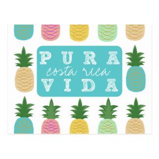 Postal colorida de Costa Rica de la piña