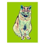 Postal colorida del gato