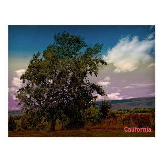 Postal colorida del paisaje de California