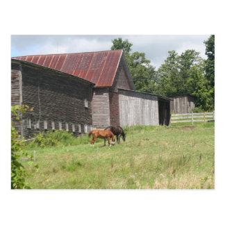 Postal con dos caballos y graneros