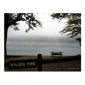 Postal contemplativa de la charca de Walden