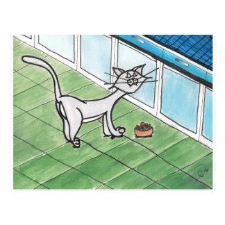 Postal criticona del gatito