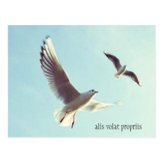 Postal de Alis Volat Propriis