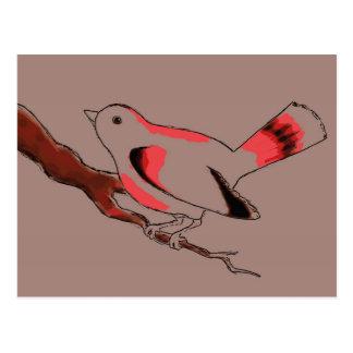Postal de Birdy del cacao