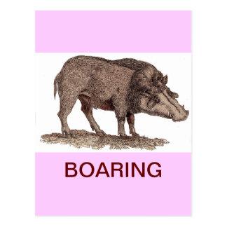 POSTAL DE BOARING (EL AGUJEREAR)