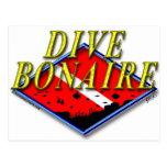 Postal de Bonaire de la zambullida