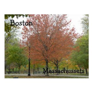 Postal de Boston mA