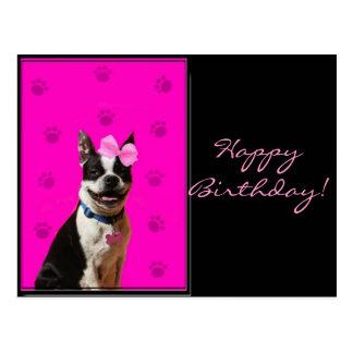 Postal de Boston Terrier del feliz cumpleaños