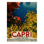 Postal de Capri L'Isola del Sole Italia del