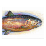 Postal de color salmón
