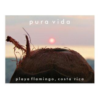 Postal de Costa Rica del coco de la puesta del sol