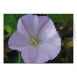Postal de flor lila, en blanco, gestaltbar