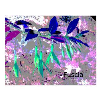 Postal de Fuscia