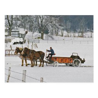 Postal de Giddie-Up de los caballos de proyecto de