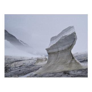 Postal de Juneau Icefield