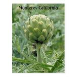 Postal de la alcachofa de Monterey California