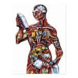Postal de la anatomía del camarero (varón)