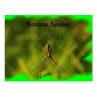 POSTAL de la araña de jardín de Kansas