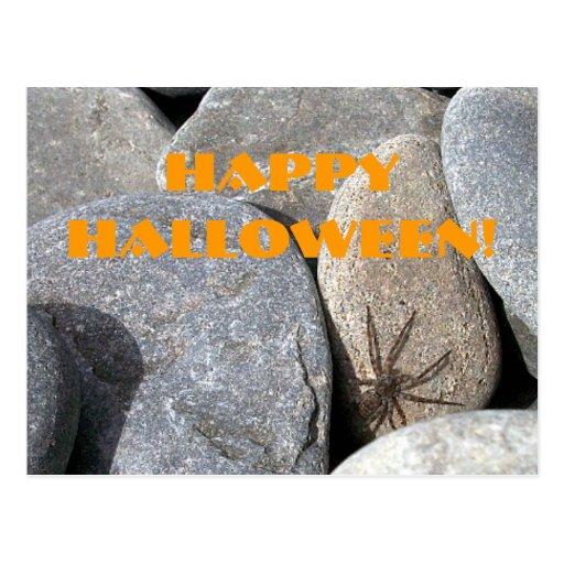 Postal de la araña de la roca