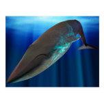 Postal de la ballena azul