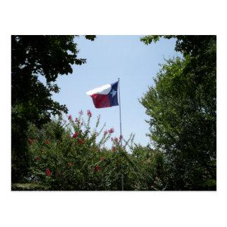 Postal de la bandera de Tejas