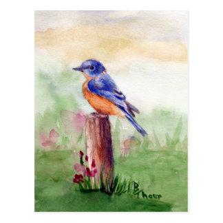 Postal de la canción del Bluebird