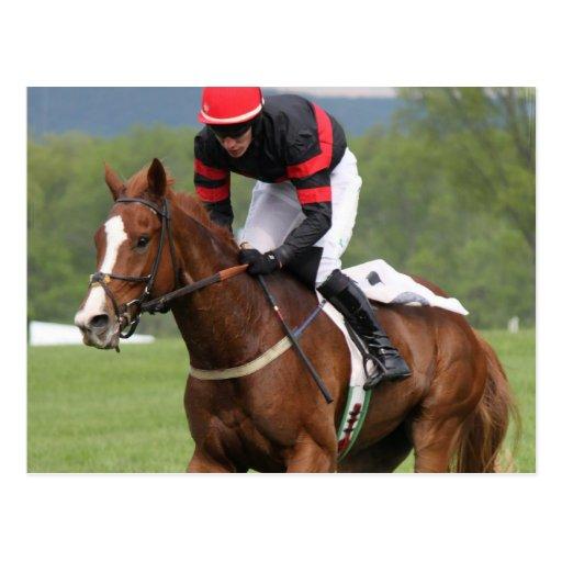 Postal de la carrera de caballos del césped