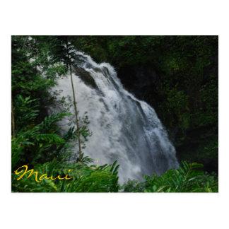 Postal de la cascada de Maui