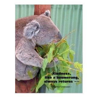 Postal de la cita de la amabilidad de la koala