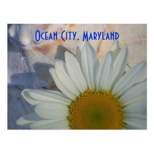 Postal de la ciudad del océano de la margarita
