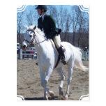 Postal de la demostración del caballo