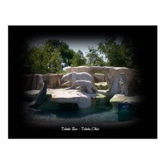 Postal de la estatua del oso polar del parque zool