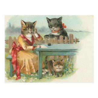 postal de la familia de gato