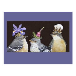 Postal de la familia del Mockingbird
