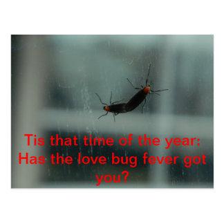 Postal de la fiebre del insecto del amor