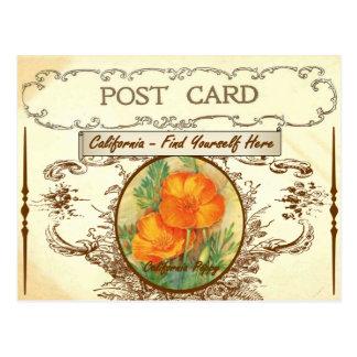 Postal de la flor de estado de California del vint