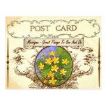 Postal de la flor de estado de Michigan del vintag