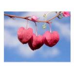 Postal de la flor de Hanging_hearts