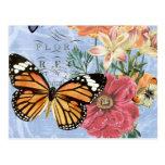 Postal de la flora de la mariposa del vintage…