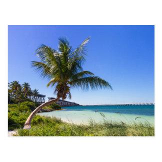 Postal de la Florida - de Bahía Honda