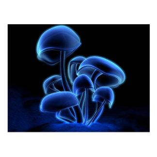 Postal de la fluorescencia