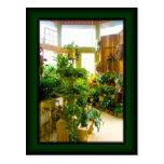 Postal de la foto de la floristería de las flores